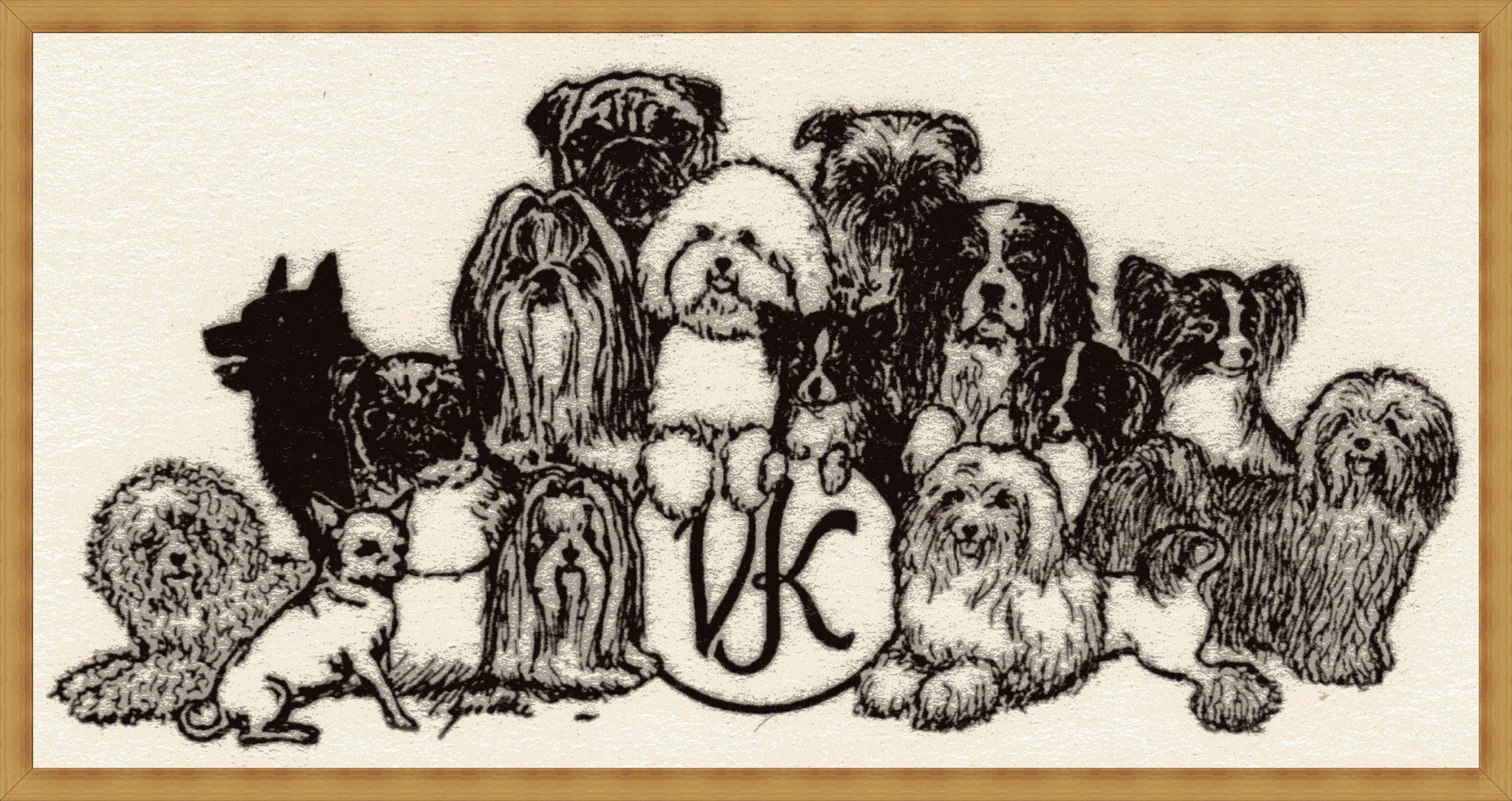 VK- Hunde img 078